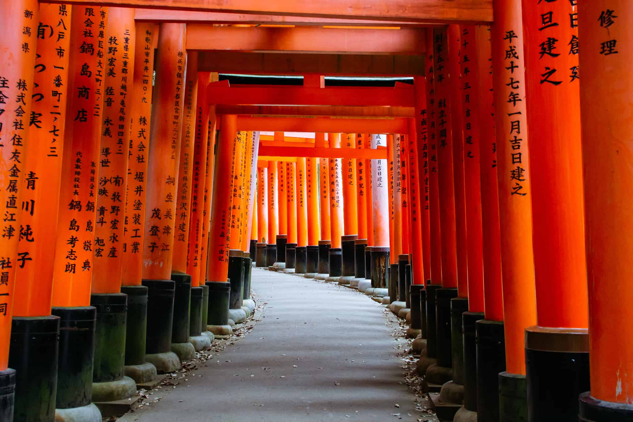 The Kyoto Guide
